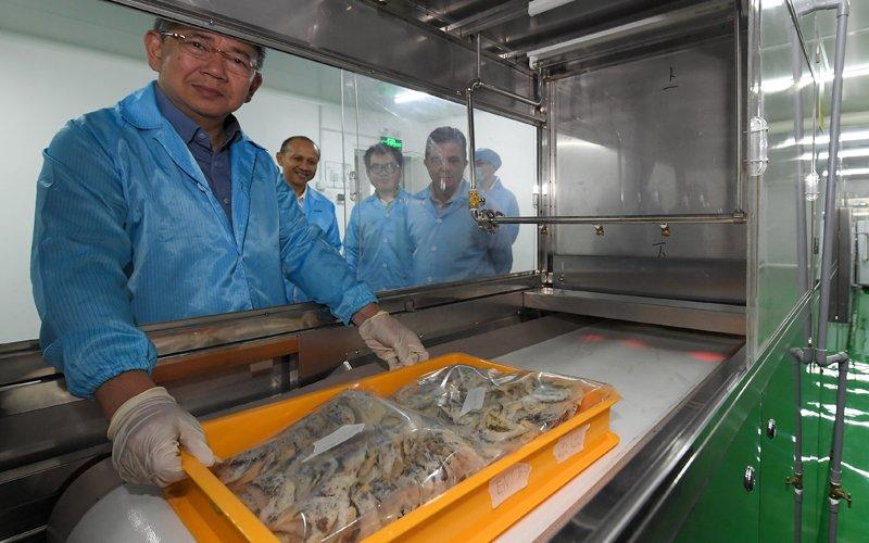 Export of swiftlet birds' nests to soar to RM1.5 bil