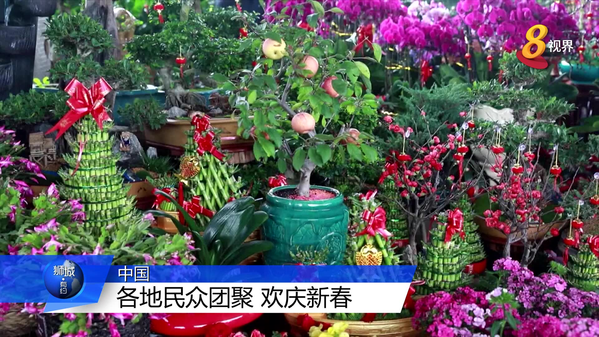 中国各地年味十足 到处洋溢团圆欢聚节庆气氛