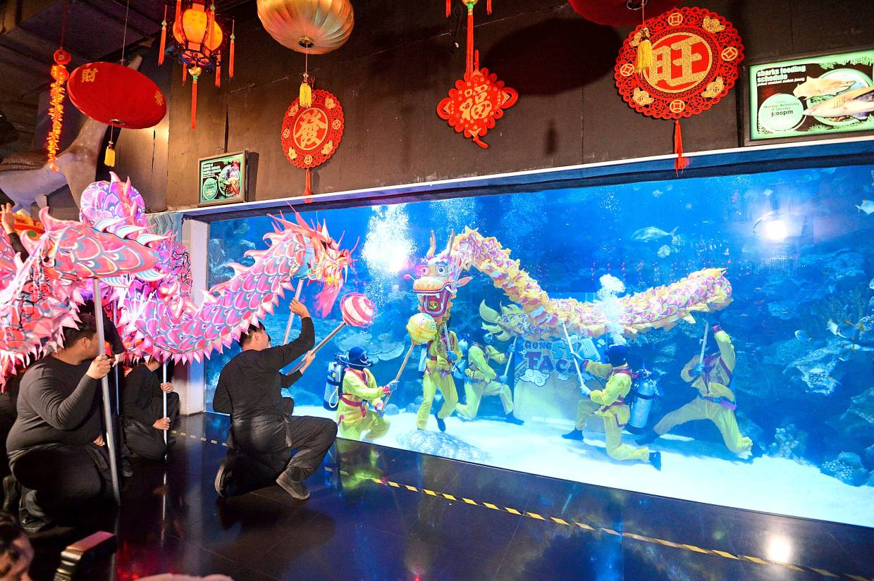 Dragon dance unlike any other