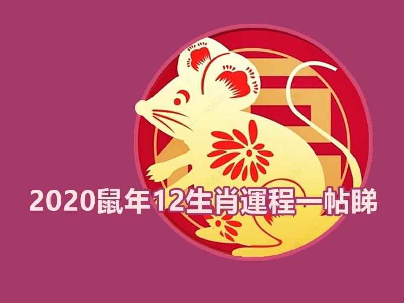 【2020年生肖运程】盘点今年气势如虹生肖 边个事业桃花当旺