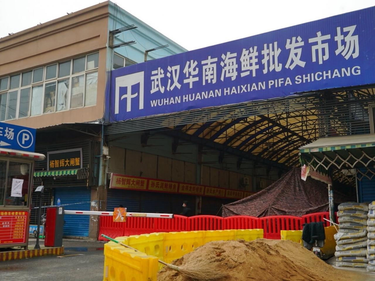 【新冠肺炎】华南海鲜市场存在大量新型冠状病毒 揭开幕后老闆真面目