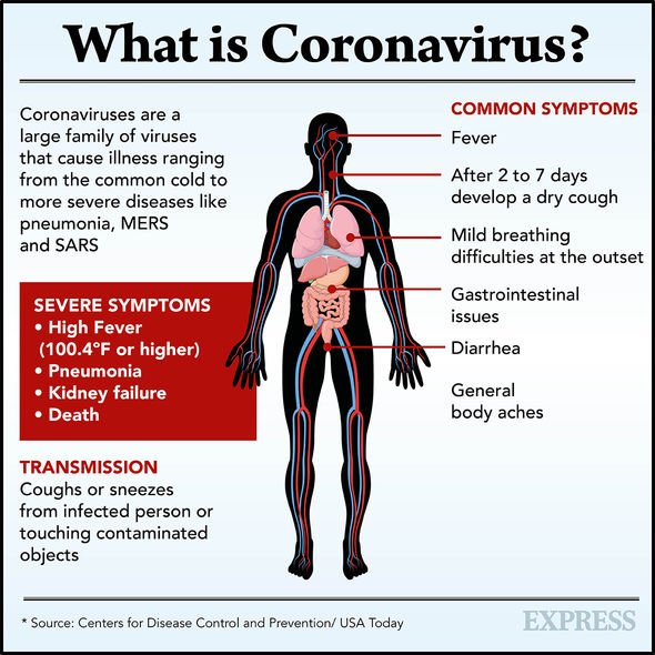 Coronavirus strain related to COVID-19 first spotted THREE YEARS AGO, scientists say