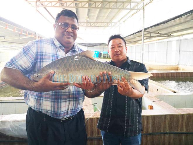 Unimas mulls aquaculture production initiative