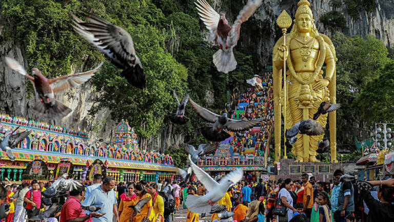 Thaipusam chariot procession to start from Sri Maha Mariamman Temple on Thursday