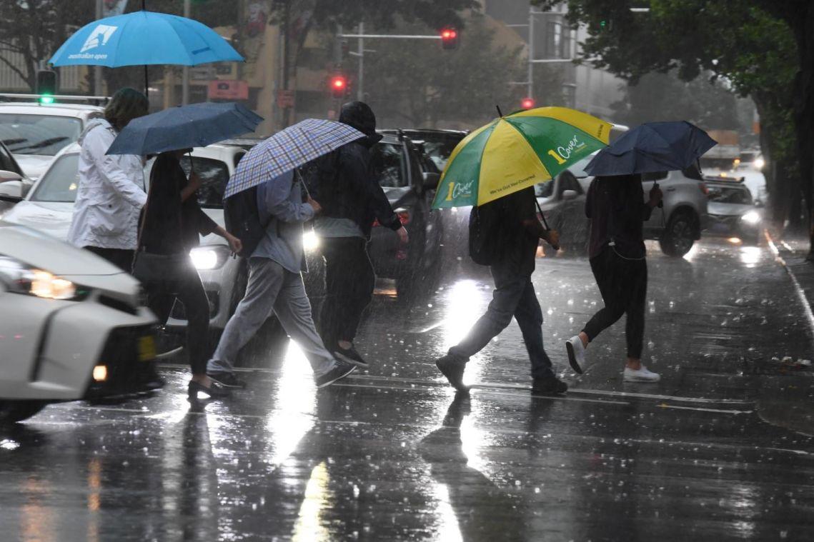 Australia celebrates as heavy rains dampen huge bush fires