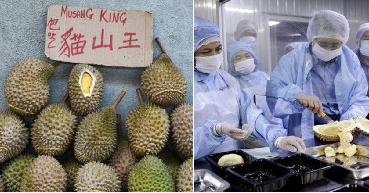 Local Durians Are Now Almost 50% CHEAPER Due To Coronavirus Outbreak In China