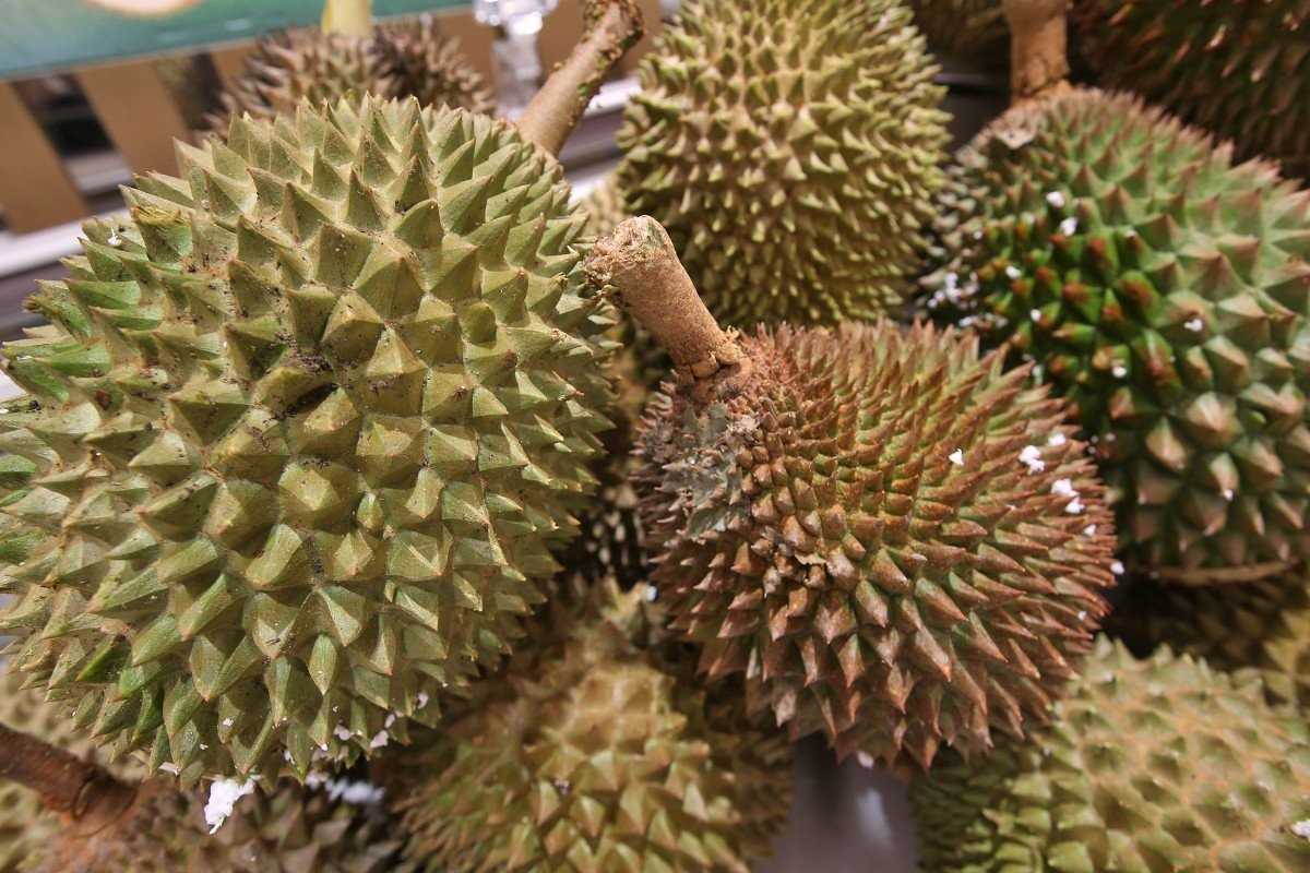 Coronavirus: Malaysian durian sellers count the cost as demand in China falls away