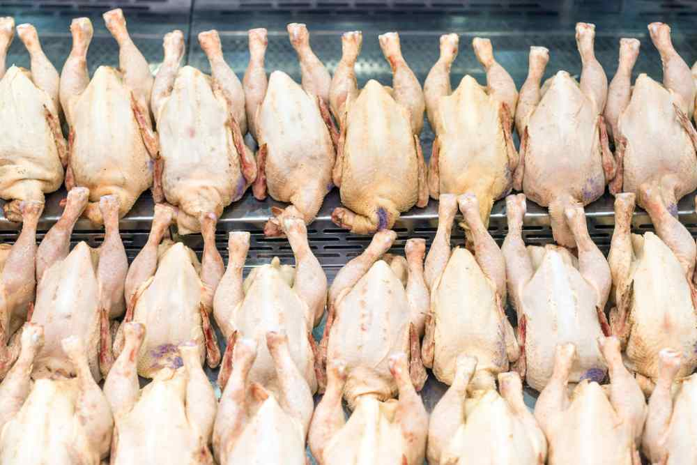 Malaysian man gets 16 months' jail for stealing more than 10,000 fresh and frozen chickens from employer in Singapore