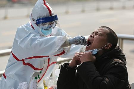China expert: New infections in Wuhan to drop to zero by month's end