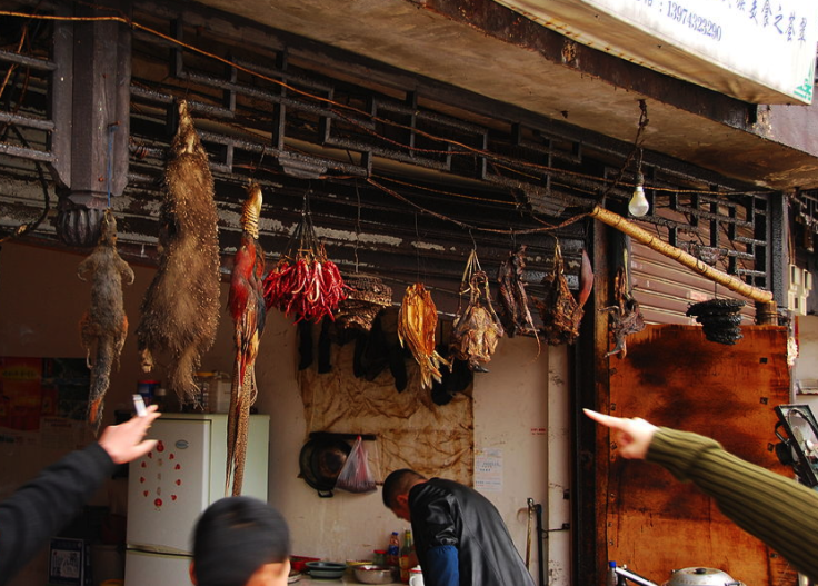 A New China? Wuhan Bans Eating Wild Animals, Offers Cash to Farmers to Stop Breeding