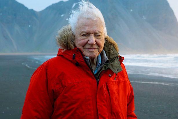 David Attenborough says coronavirus is short-term problem - climate change isn't