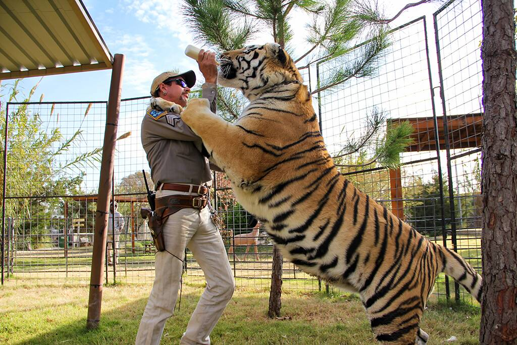 Of Course Joe Exotic Is Loving His Newfound Tiger King Fame