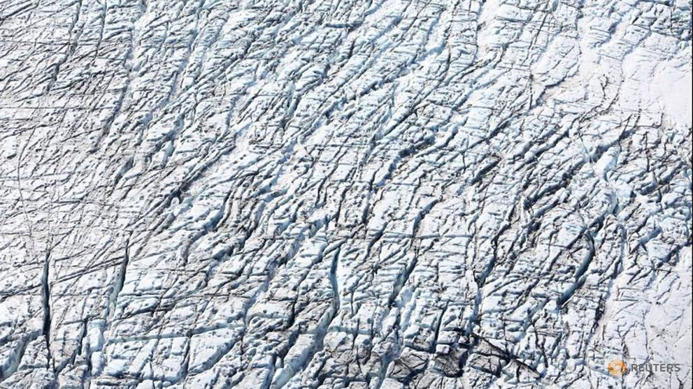 Frozen and desolate Antarctica once boasted warm, swampy rainforests