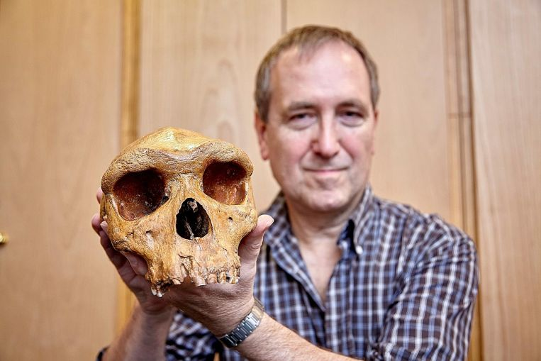 Dating of landmark skull fossil offers new clues to human origins