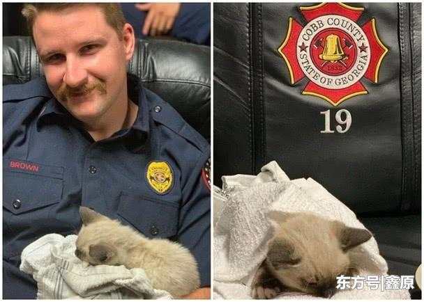 美乔治亚州流浪小猫困屋顶获救,消防员爱心爆棚争相照顾!