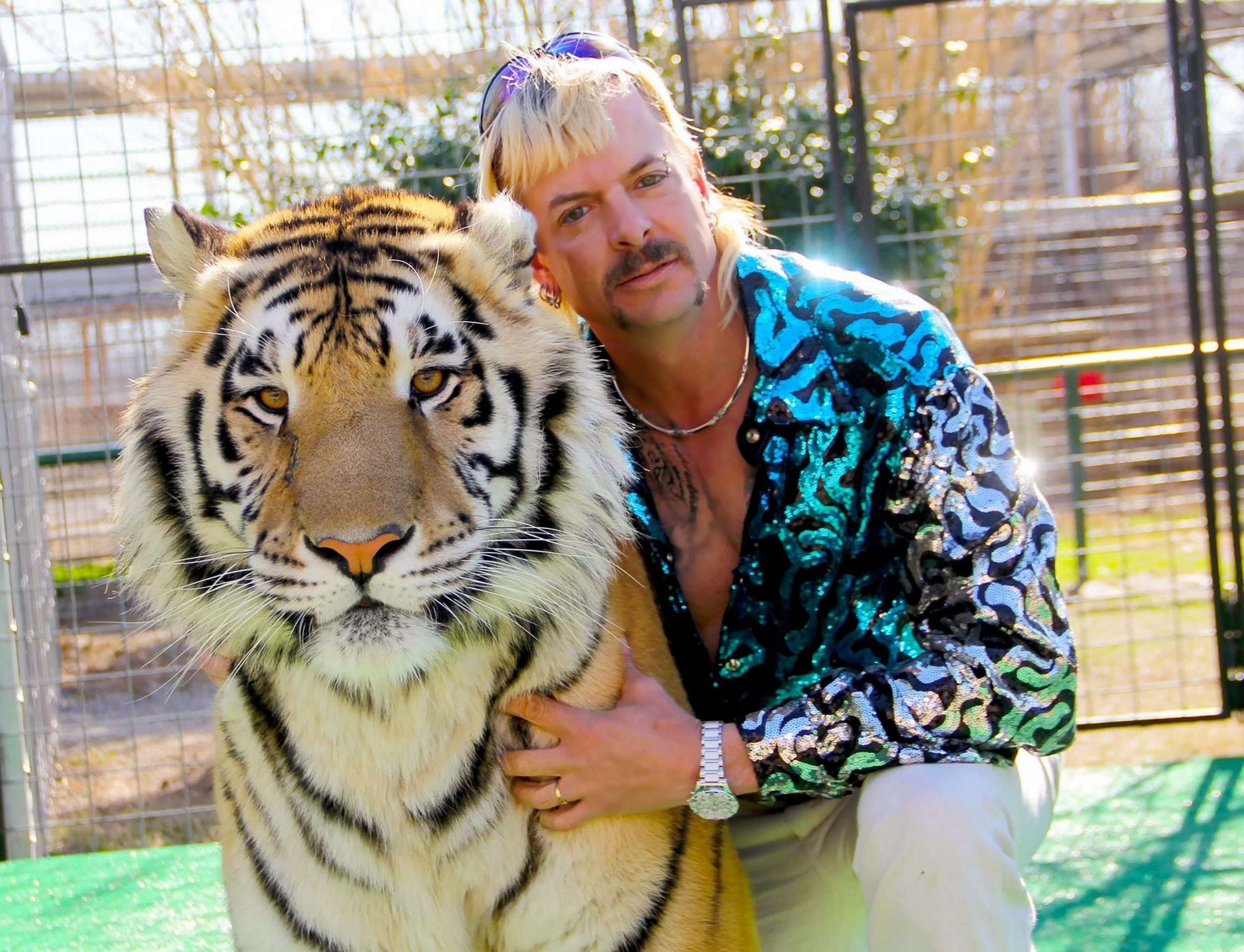 Tiger King's Dillon Passage shoots down claims Joe Exotic is scared of tigers: 'Would he get into their cages if he was?'