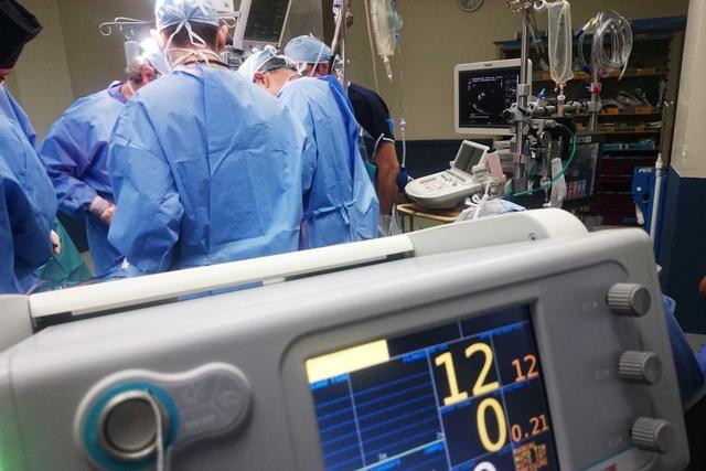 澳洲已有50人死于新冠 疫情趋缓新州或放宽限制