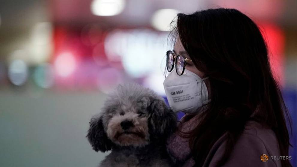 China reclassifies dogs as pets, not livestock, in post-coronavirus regulatory push