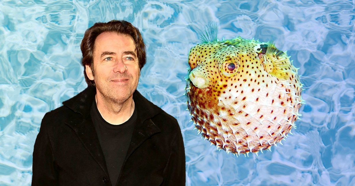 Jonathan Ross recalls nearly dying after eating pufferfish: 'A meal that nearly killed me'