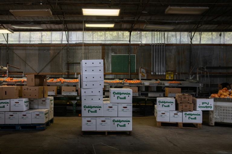 California orders sick leave for essential food workers