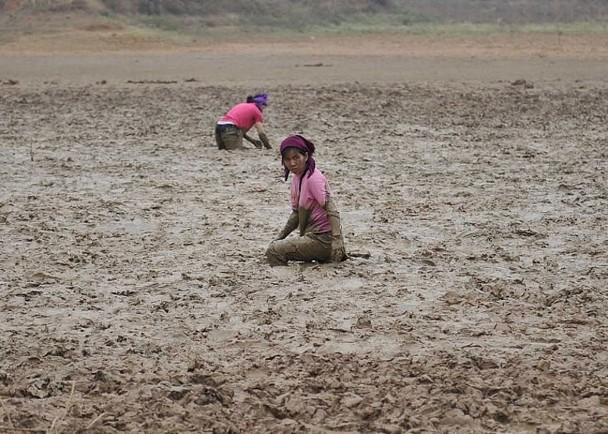 云南旱情扩大‧近150万人缺水