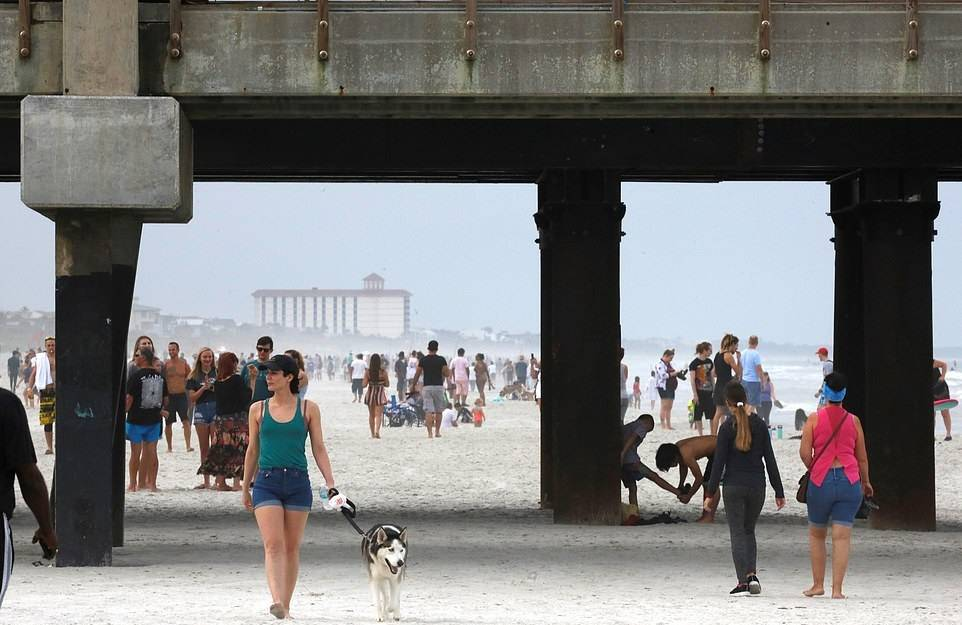 """美国佛州开放海滩公园造成人潮汹涌!网友抨击""""佛州白痴""""一度成推特热搜榜首!"""
