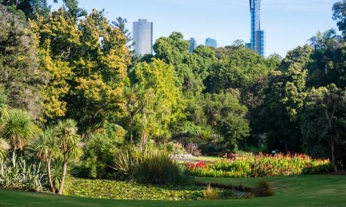 The coronavirus has made me so grateful for city parks. We should fight for them