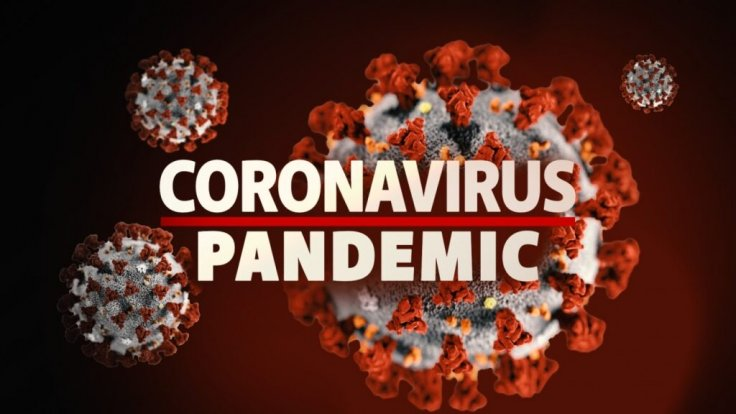 Why did the recovered Coronavirus patients test positive again? Experts reveal