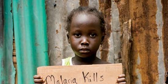 外媒:津巴布韦暴发疟疾疫情,卫生系统雪上加霜