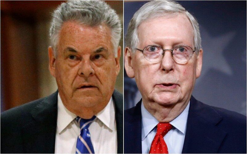 Gop rep. Pete king shreds 'marie antionette' mitch Mcconnell's bankruptcy plan