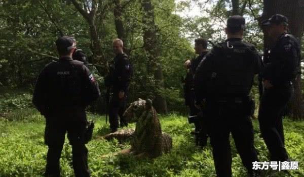 英国居民区报警有老虎出没,当地警方重装到场才发现误会大了!