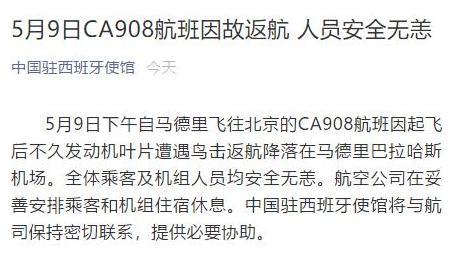 西班牙一飞北京航班发动机遭鸟击后返航 无人员伤亡