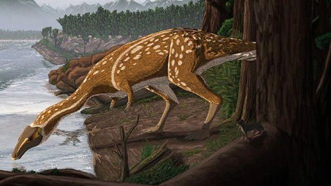 Rare T-rex ancestor found in Australia