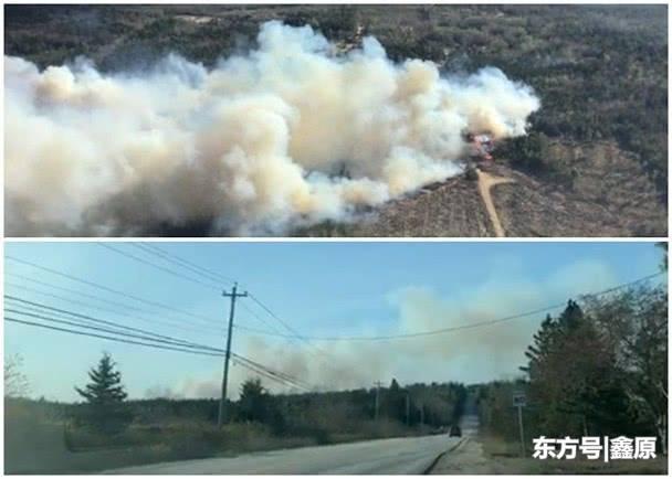 加拿大新斯科舍省森林发生山火,当地大批消防员到场救援!