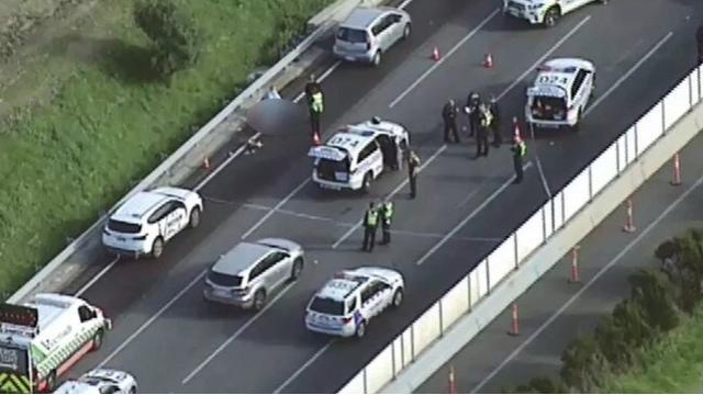墨尔本持刀男子遭警察击毙 高速公路关闭