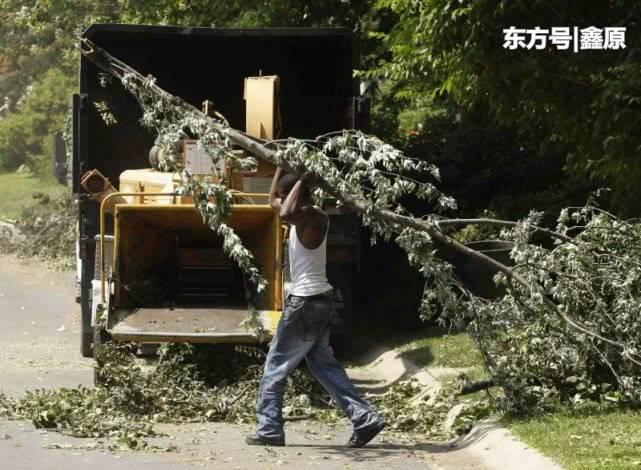 惨烈!美34岁工人被卷入碎木机当场死亡,警方:只找回部分遗体