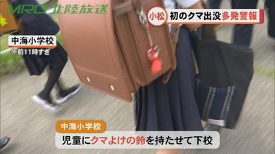 """日本各地频现""""熊出没"""" 一周内至少三人遇袭受伤"""