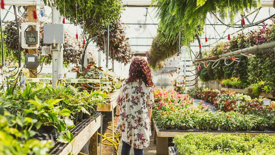 ベランダで、緑を(大麻も)育てるミレニアルズ【来週のQuartz Japan(6/1〜6/5)】