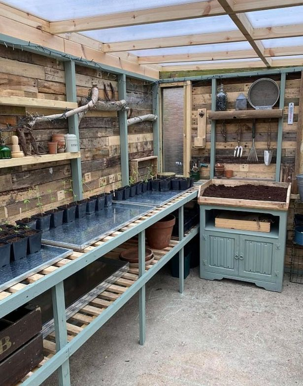 Woman builds £60 greenhouse worthy of a George Clark shed of the year nomination