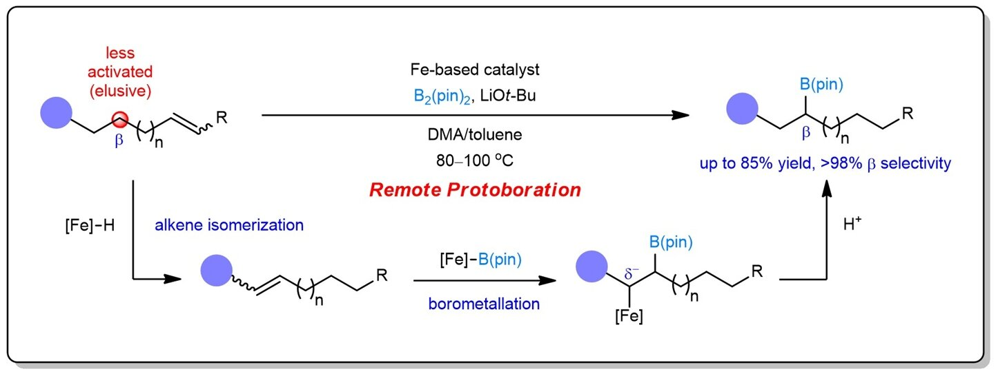 Sustainable iron catalysis enables controllable alkene borylation