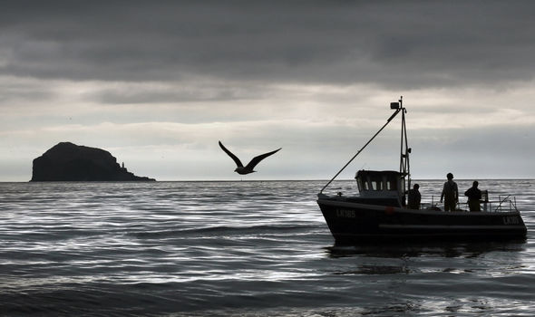 Brexit talks on brink as major fishing hurdle may 'derail whole negotiation' – new report