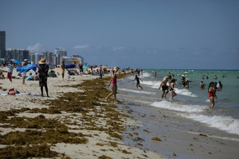 Florida gambles on reopening, as virus numbers rise