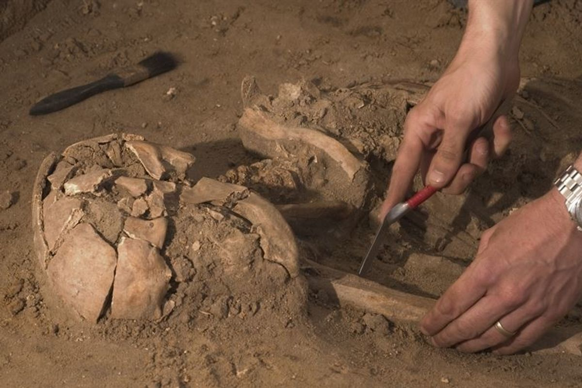 Archeologists Predict Which Historical Treasures They Hope To Find In The Next Decade