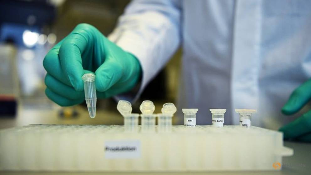 First results of COVID-19 vaccine trial in Germany expected in two months