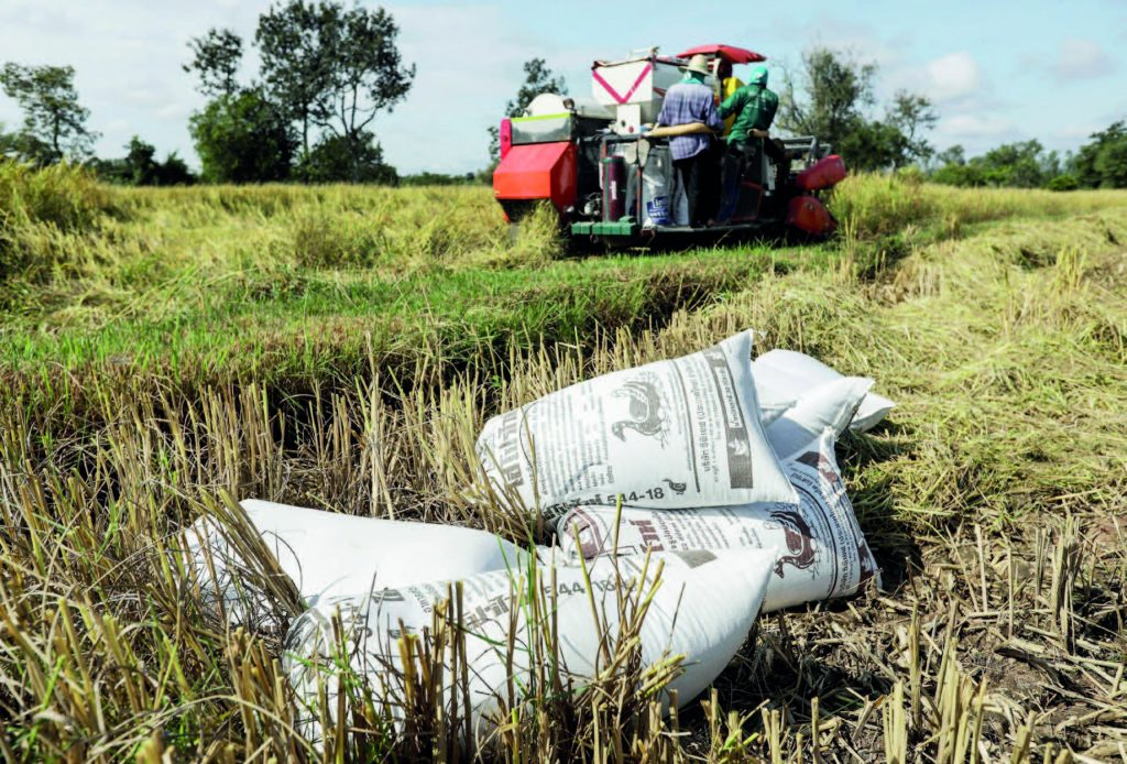 Thailand eyes exports of 6m tonnes of rice in 2021