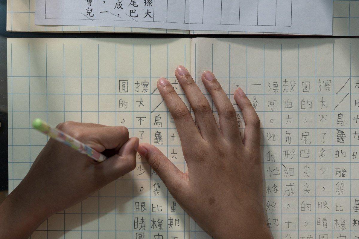 Academic marginalisation of Hong Kong's ethnic minority groups increases amid coronavirus pandemic