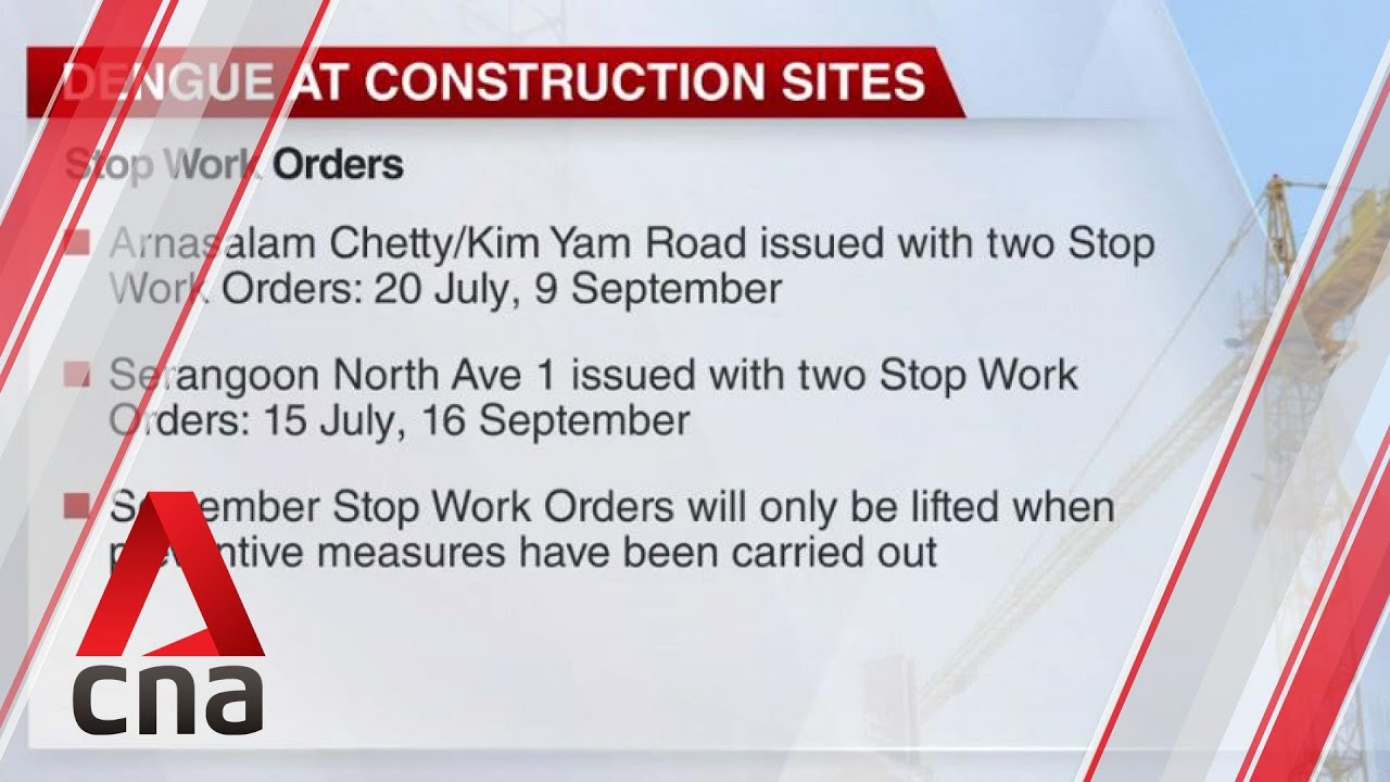 Mosquito breeding at construction sites: 21 stop work orders issued, 10 contractors to be charged