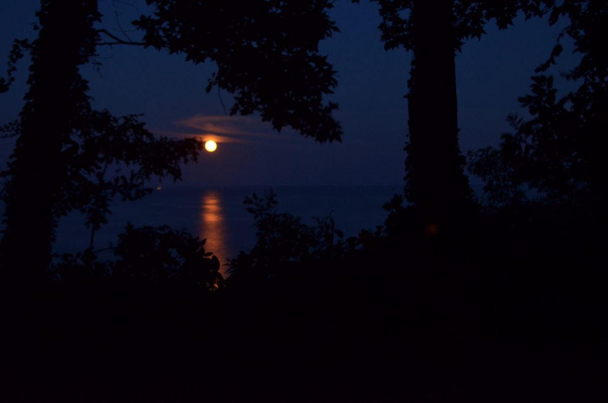 How to see the full moons on Oct. 1 and Halloween