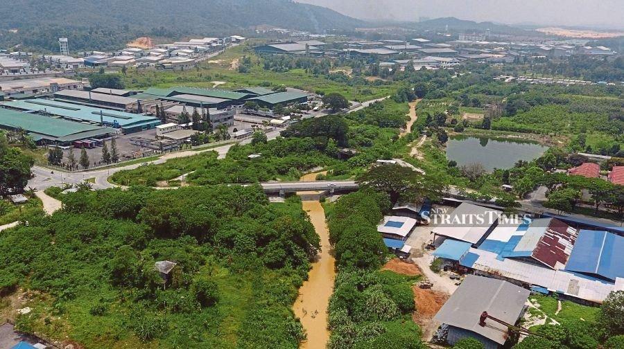 The Destruction Of The Rain Forest