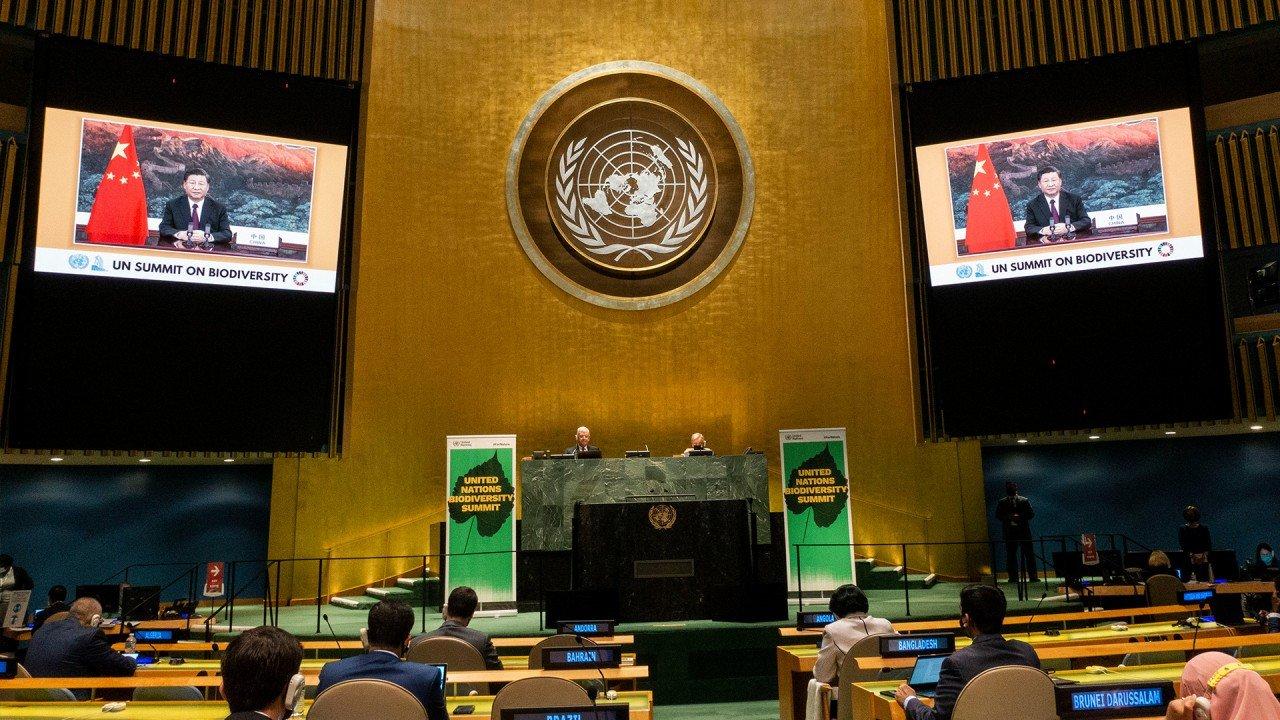 China still weighs climate summit RSVP a week after Joe Biden's invitation